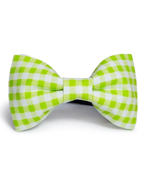 Gingham: Green