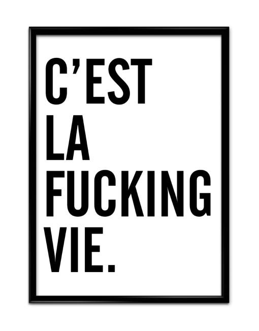 Cest La Fucking Vie
