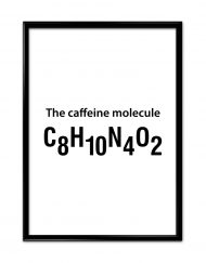 The Caffeine Molecule